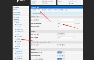 Padavan不能用外网ipv6地址设置